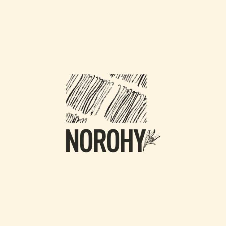 00-logo-beige-Norohy
