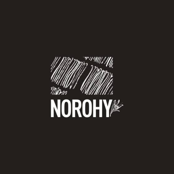 00-logo-dark-Norohy